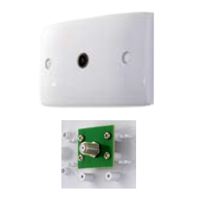 TV Wallplate -